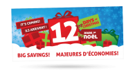 ANBL 12 Days for Christmas - Ad
