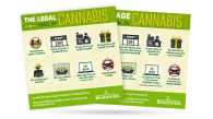 GNB Cannabis Infographic